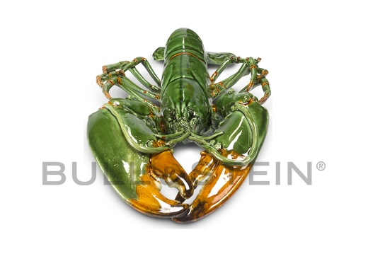 LOBSTER - TURQUOISE-GREEN - GIANT