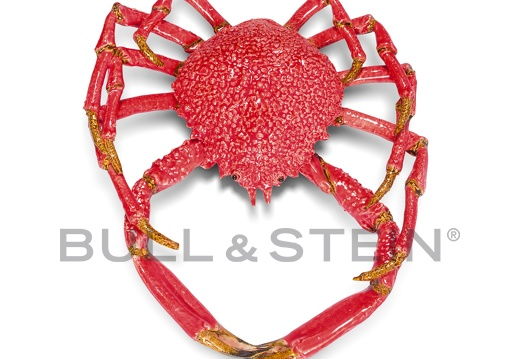 SPIDER CRAB - RED - GIANT