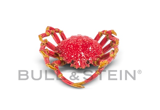 SPIDER CRAB - RED - LARGE