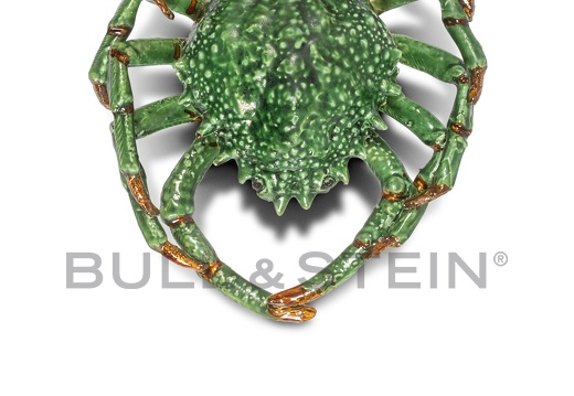 SPIDER CRAB - TURQUOISE-GREEN  - LARGE